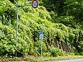 Oshimaku Odaira, Joetsu, Niigata Prefecture 942-1103, Japan - panoramio (6).jpg
