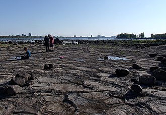 Ottawa River - Ottawa River Stromatolite Bed, near the Champlain Bridge (Ottawa), with the Ottawa skyline in the background