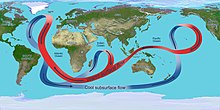 Overturning circulation of the global ocean.jpg