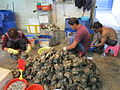 Oyster farmers at LFS Fish Market 2013.JPG