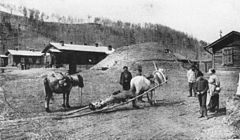 P452a Mode of transporting a corpse through the taiga in the Amur country.jpg