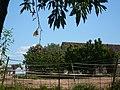 Paller de Can Domènec P1510036.jpg