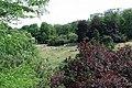 Parc des Buttes-Chaumont, pelouse autorisée 01.jpg