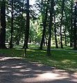 Park Miejski3.jpg