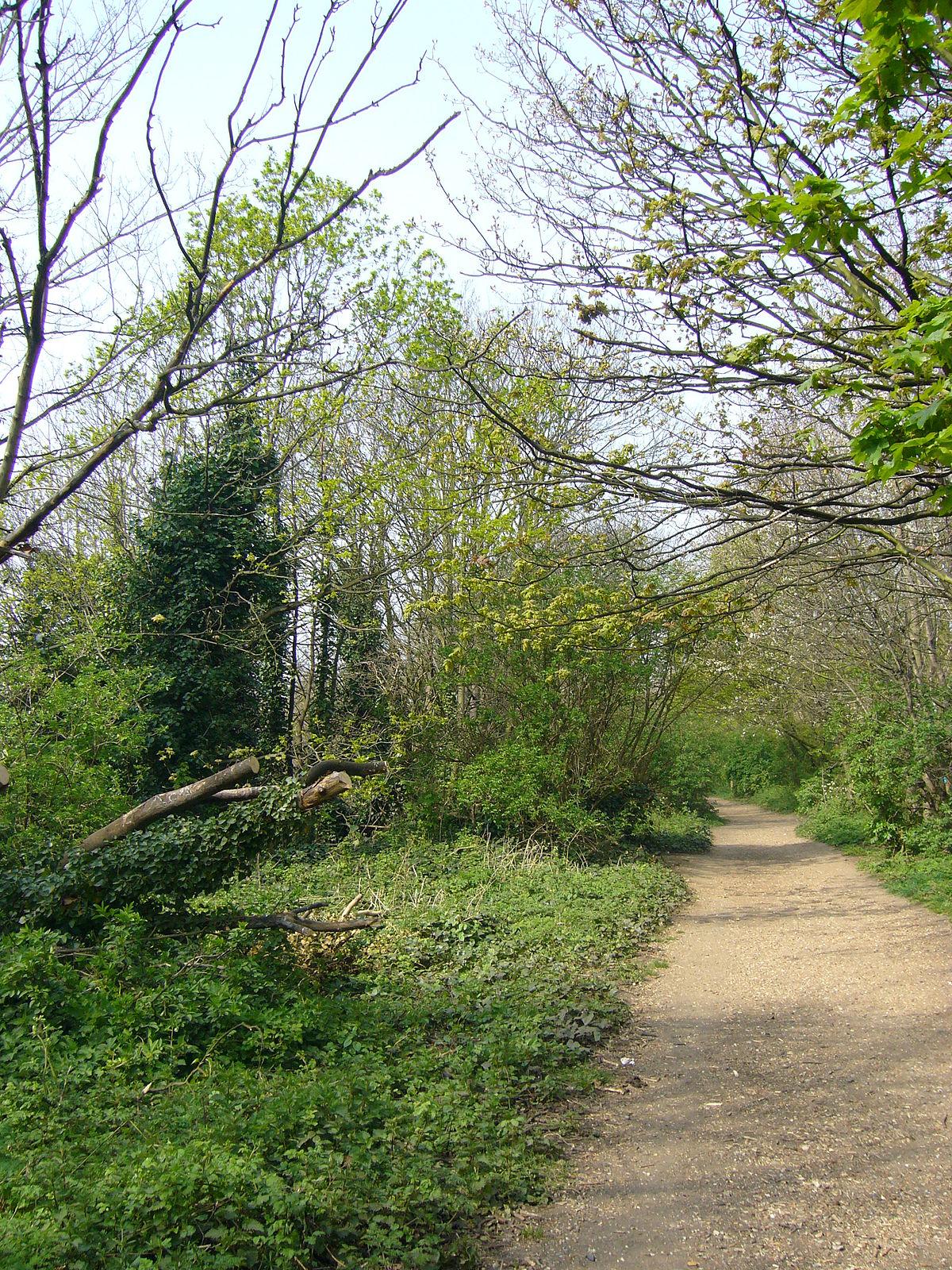 Parkland Walk - Wikipedia