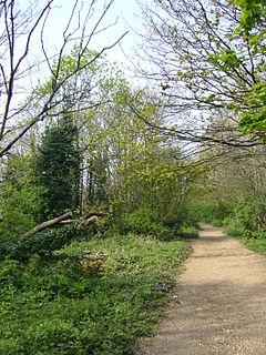 2.5-mile linear green walkway in London