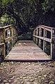 Parque Nacional de Itatiaia - RJ.jpg