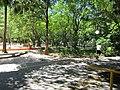 Parque da Jaqueira - Recife, Pernambuco, Brasil (8645482013).jpg