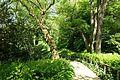 Pathway - Prior Park - Bath, England - DSC09751.jpg