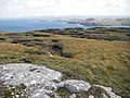 Peat hags - geograph.org.uk - 958015.jpg