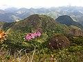 Pedra Riscada - panoramio (2).jpg
