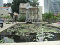 PikiWiki Israel 47473 Nymphaea pond in Sarona.JPG