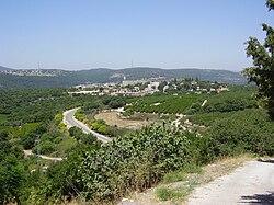 PikiWiki Israel 8779 shomera.jpg