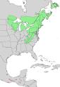 Pinus strobus and chiapensis range map 2.png