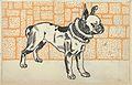 Pitbull Terrier MET DP847755.jpg