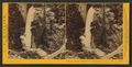 Piwyac, or the Vernal Fall, 300 feet from the cliff, Yosemite Valley, Mariposa County, Cal, by Watkins, Carleton E., 1829-1916 2.png