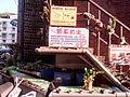 Plant Wall Aquaponics IMG 20150805 173021.jpg