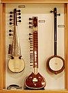 Plucked string instruments (5) Indian string instruments, Sarod, Sitar, Iktara - Soinuenea.jpg