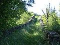 Pont Medieval d'Oix (maig 2011) - panoramio (1).jpg
