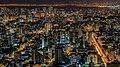 Porto Alegre - Brazil Landscape-Night.jpg