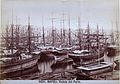 Porto di Napoli - n. 5091.jpg