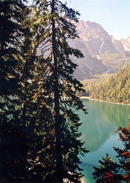 File:Pragser Wildsee im Herbst.JPG