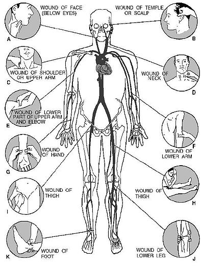 Foot Pressure Points Diagram