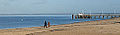 Promenade sur la plage d'Arcachon en hiver - Walk on the beach in Arcachon in winter (11477472763).jpg