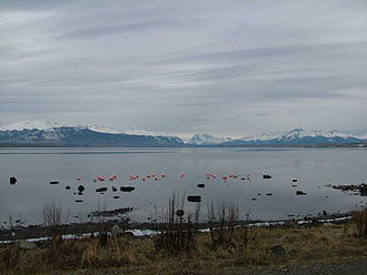 Puerto Natales - Image: Pto Natales(Chile)