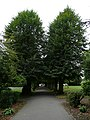 Public gardens of Alton, Hampshire, England 4.jpg
