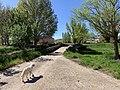 Puente de Abajo (Pinilla Trasmonte) 10.jpg