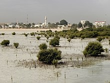 Qatar, Simaisma (6), view from the sea with mangroves.JPG