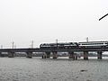 Qinglindu Railway Bridge.jpg