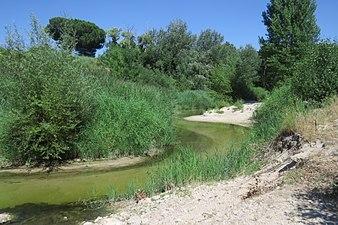 Río Cega 1.jpg