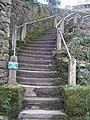 Radical Steps - geograph.org.uk - 932619.jpg