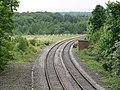 Railway near Moira, Leicestershire - geograph.org.uk - 821059.jpg