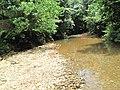 Rain forest river - panoramio.jpg