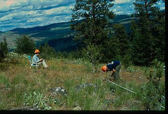 Plant ecology - Rangeland monitoring using Parker 3-step Method, Okanagan Washington 2002