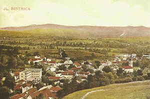 Ilirska Bistrica - 1910 postcard