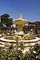 Retiro Park in Madrid - Rosengarten - 13.jpg