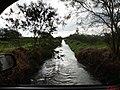 Ribeirão do Sertãozinho, também chamado de Córrego Sul na via de acesso para a Destilaria Santa Inês - Irmãos Toniello - panoramio.jpg