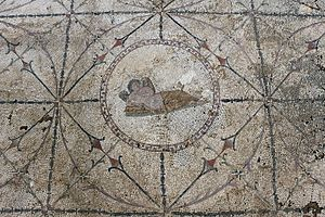 Risan, villa romana, mosaici della fine del II secolo, camera da letto 04 ipno