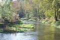 River Allen in the Crichel Estate - geograph.org.uk - 591544.jpg