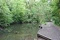 River Dibbin east of Patrick Wood bridge.jpg
