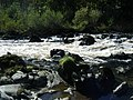 River Nith at Enterkinfoot - geograph.org.uk - 1503845.jpg