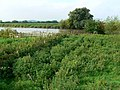 River Severn, near Hempsted, Gloucestershire - geograph.org.uk - 942655.jpg