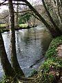 River Teign - geograph.org.uk - 363823.jpg