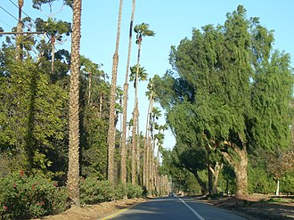 Riverside, California - Victoria Avenue provides a citrus-lined paseo for both visitors and locals to enjoy.