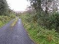 Road at Boihy - geograph.org.uk - 1505850.jpg