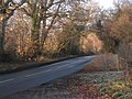 Road to Witherenden Hill - geograph.org.uk - 1113368.jpg